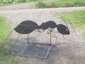 Ant Sign